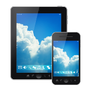 Place Security on Your Employees' Mobile Devices